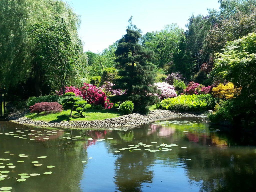 Japanese Gardens, Wroclaw